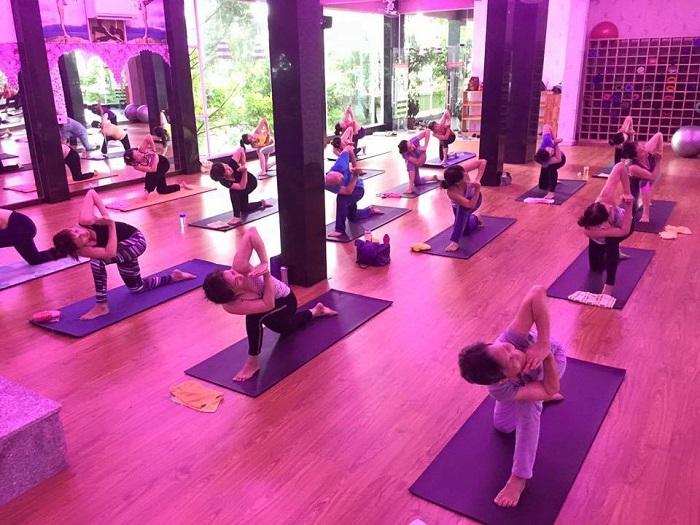 yoga-da-nang-lua-chon-hoan-hao-duy-tri-suc-khoe-va-keo-dai-thanh-xuan-8